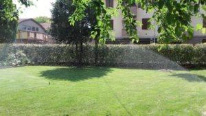 Mastro Verde - Giardinieri a Reggio Emilia e Modena - mastro-verde-giardini-parchi-aree-verdi-irrigazione-prato-modena-reggio-emilia-Cadelbosco-001-300x169