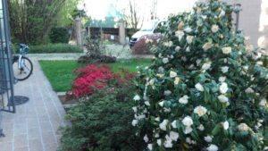 Mastro Verde - Giardinieri a Reggio Emilia e Modena - mastro-verde-giardini-parchi-aree-verdi-irrigazione-prato-modena-reggio-emilia-giardino-pensile-006-300x169