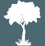 Mastro Verde - Giardinieri a Reggio Emilia e Modena - Icona-mastroverde-albero