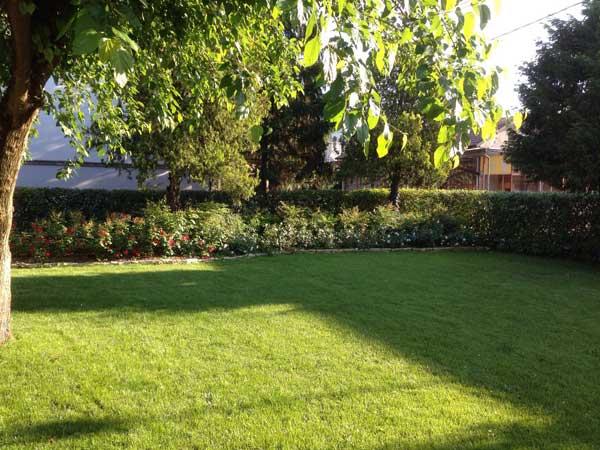 Mastro Verde - Giardinieri a Reggio Emilia e Modena - tagliare-erba-modena-reggio-emilia