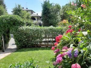 Mastro Verde - Giardinieri a Reggio Emilia e Modena - 20200615_120710-300x225