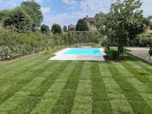 Mastro Verde - Giardinieri a Reggio Emilia e Modena - 20200625_152932-300x225