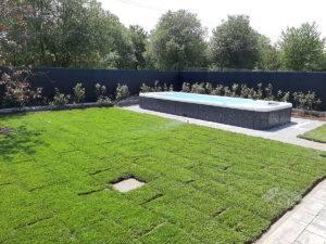 Mastro Verde - Giardinieri a Reggio Emilia e Modena - 20200626_142347-300x225
