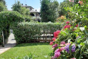 Mastro Verde - Giardinieri a Reggio Emilia e Modena - 20200615_120710-custom_crop