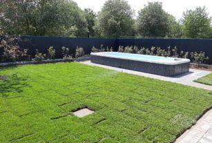 Mastro Verde - Giardinieri a Reggio Emilia e Modena - 20200626_142347-custom_crop