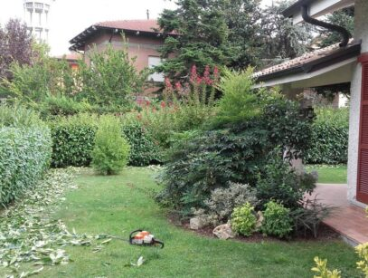 Mastro Verde - Giardinieri a Reggio Emilia e Modena - mastro-verde-giardini-parchi-aree-verdi-irrigazione-prato-modena-reggio-emilia-Sesso-potatura-siepe-008-custom_crop
